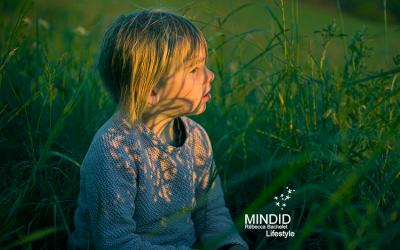 Un kit de méditation gratuit destiné aux écoles !